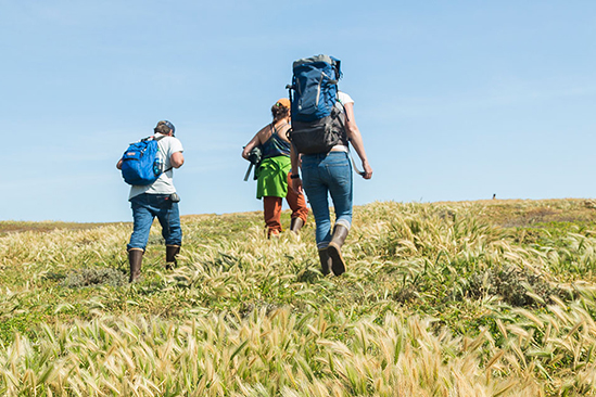 Three hikers crossing a grassy knoll.
